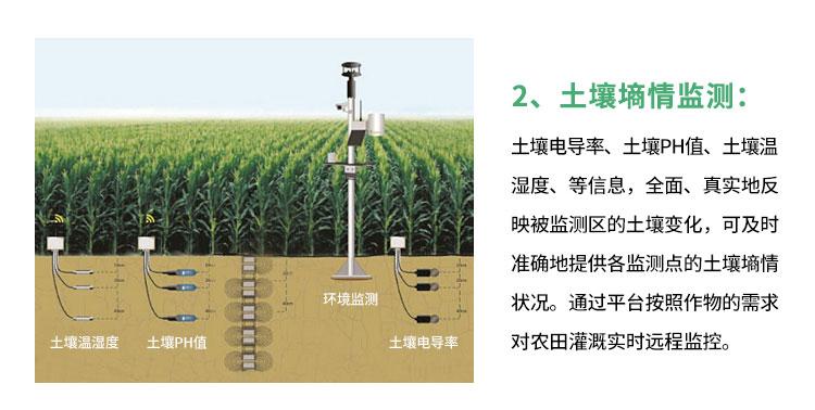 自动灌溉系统
